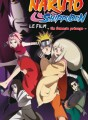 Naruto Anime Comics tome 4
