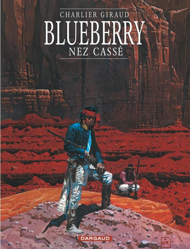 blueberry-tome-18-nez-casse