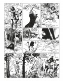 Complete collection Thorgal B&W Vol.4 (french Edition)