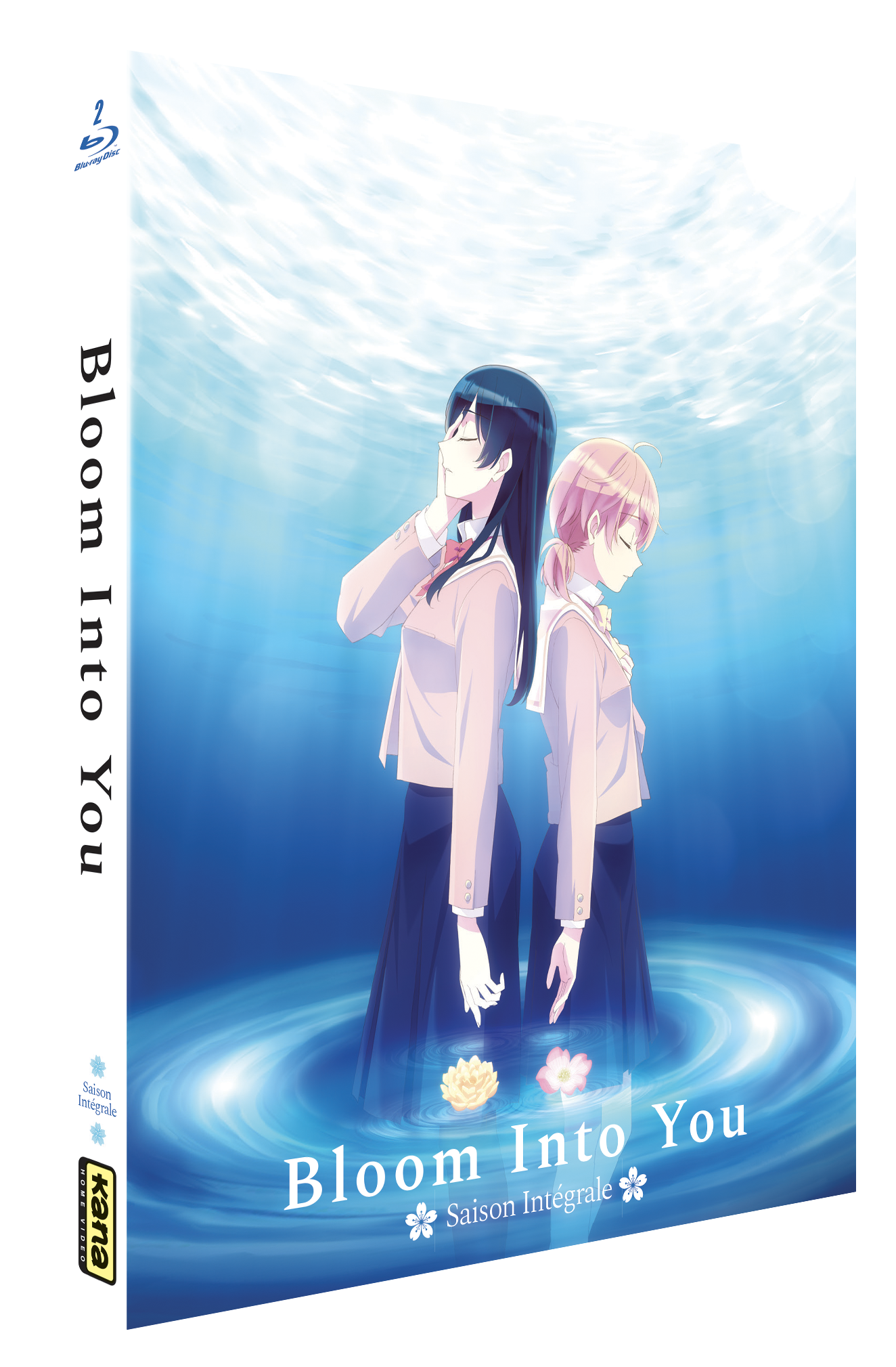 Bloom Into You - Intégrale Blu-ray