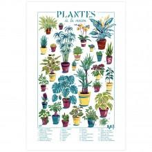 Sérigraphie Les plantes de la maison