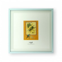 Lithography Tintin & the golden beetle
