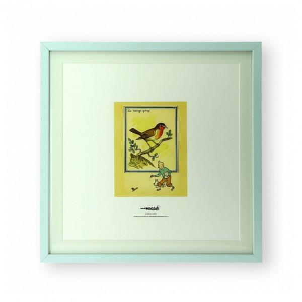 Lithographie Tintin et le rouge gorge