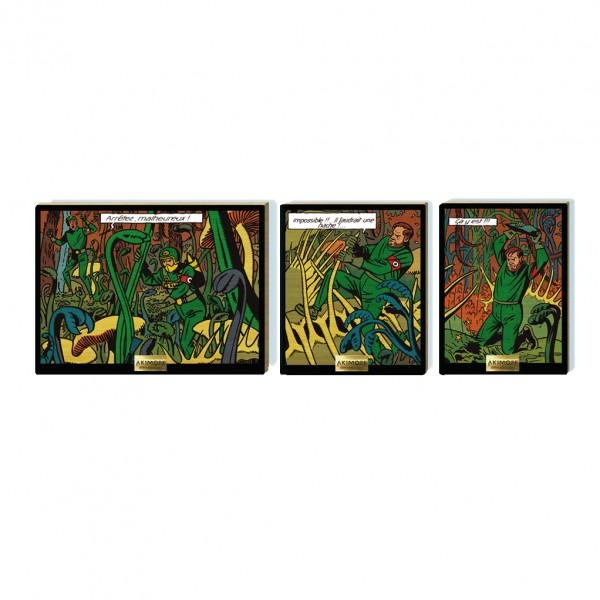 Triptyque de collection en bois - Les plantes carnivores
