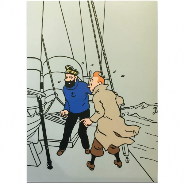 Lot Literie Tintin Rackham Tintin et Haddock